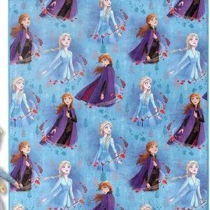 Frozen 2 Fleece Blanket